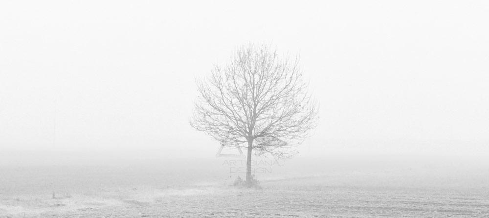 Le nuove ricerche fotografiche di Stefano Selmi
